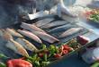 באליק אקמק – Balık Ekmek